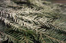 Снег - декор на елке