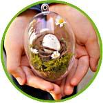 Яйца из прозрачного пластика