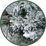 Аэрозоль для новогоднего декора SNOW (Снег)