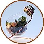 Лампочка прозрачная пластиковая, 6х10 см, с цоколем и подвесом