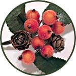 Букетик новогодний, ягоды в инее и шишки, цвет оранжевый
