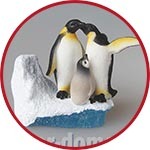 Семья миниатюрных пингвинов