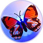 Бабочка светящаяся, светодиодная, 1 шт., с выключателем