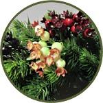 Боярышник, ветки декоративные с ягодами, 5 цветов