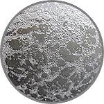 Паста ледяная, эффект инея, Аква-колор, 80 мл
