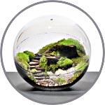 Миниатюрный садик в шарике