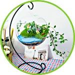 Садик миниатюрный в прозрачном шаре