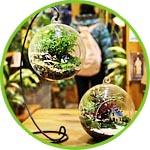 Мини-садик в шарике